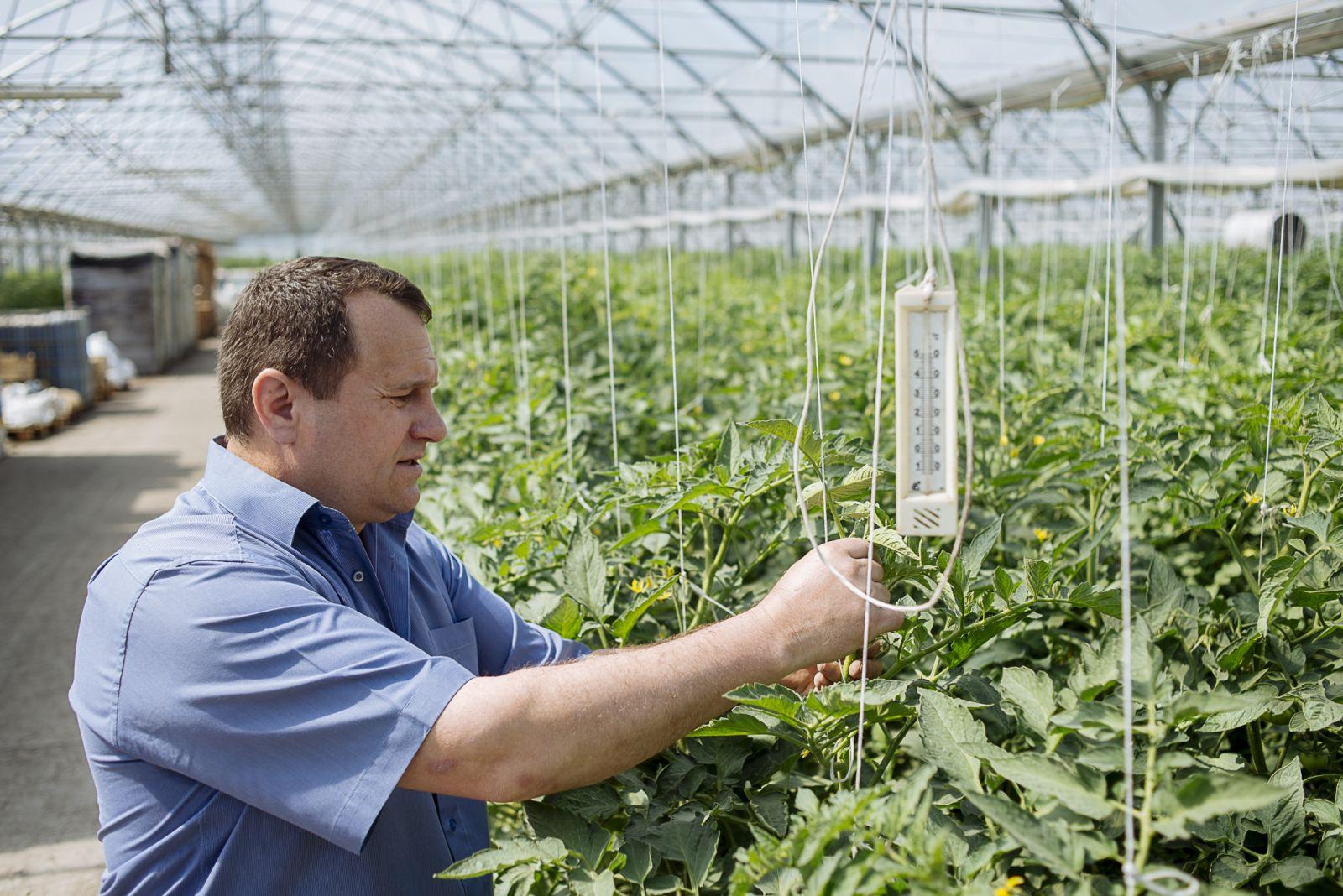 La perfectarea actelor pentru export nu există niciun fel de probleme, agricultor iurie bivol ialoveni, export de fructe in rusia, comert moldova ue, integrare europeana acordul de asociere