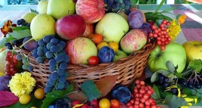 Fructe moldovenesti, expoziție, Spania, Moldova Fruct, Reublica Moldova